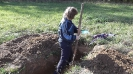 Закопки в Белых Столбах, Сентябрь 2012_3