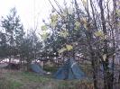Палаточный лагерь_1
